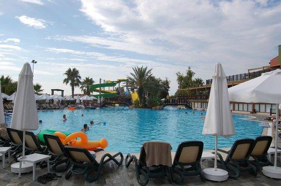 Alba Resort Hotel: Activity-pool