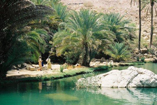Al Bustan Palace, A Ritz-Carlton Hotel: Een van de wadi's tijdens jeepsafari