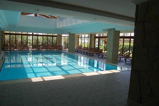 Alba Resort Hotel: wellnes