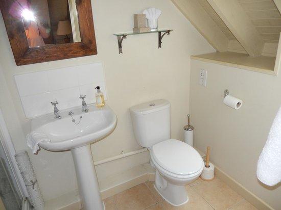 Munden House: Shower room