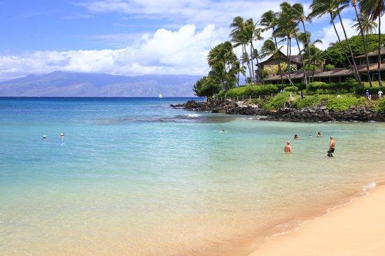 Napili Kai Beach Resort: The beach - tunliweb.no
