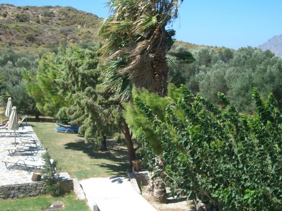 Hotel Irida Plakias: The wind whipping into the trees by the pool area...