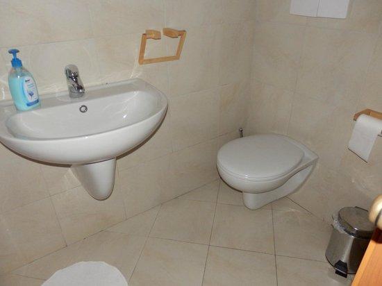 Ariel Bed & Breakfast : bagno privato della camera