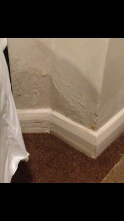 The Croham Hotel: damp and crumbling plaster