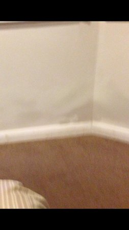 The Croham Hotel: damp walls