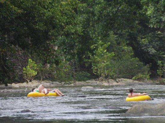 Creekstone Inn : Tubing down the Little Pigeon River