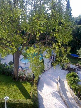 Novotel Aix en Provence Pont de l'Arc : zicht op het zwembad