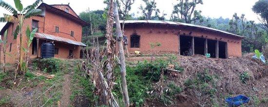 Srijana Farms