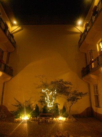 Central Hotel 21: giardino by night