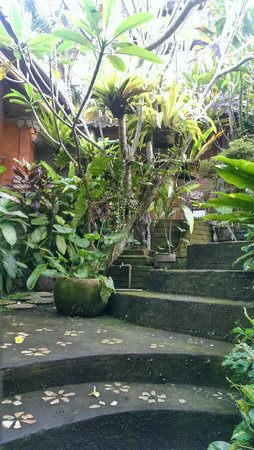 Nirwa Ubud Homestay: From the lunch/lobby area to the bungalows