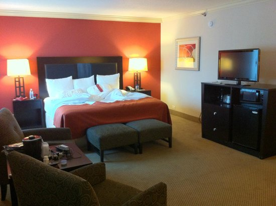Holiday Inn Itasca (Woodfield Area): Suit, bed side