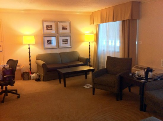 Holiday Inn Itasca (Woodfield Area): Suit, couch side