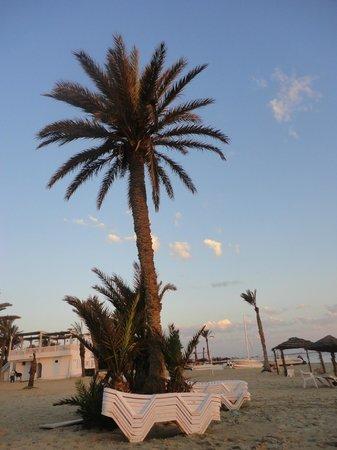 Sangho Club Zarzis : plage