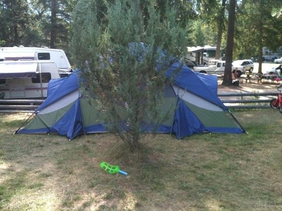 Christina Pines Campground: tree in the middle of the site, however our tent is big.