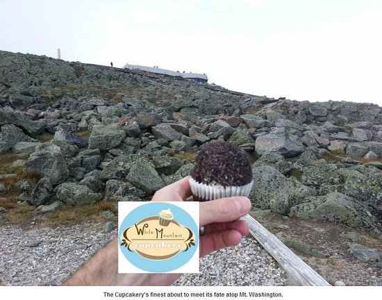 Atop Mt. Washington this cupcake with meet its fate