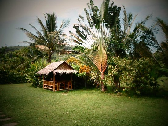 Chez Charly Bungalow: Mornng view