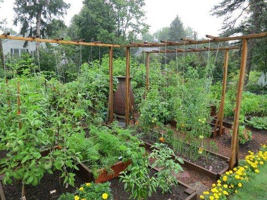 The Willard Street Inn: Vegetable and herb garden on the ground