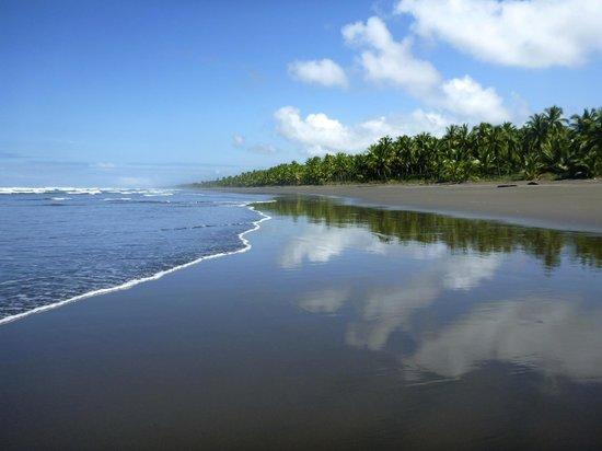 Clandestino Beach Resort: Palo Seco Beach