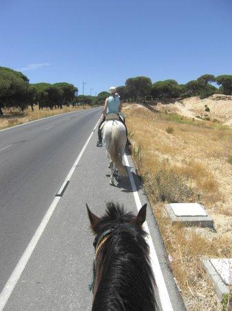 Rancho La Paz: Ritt auf der Straße