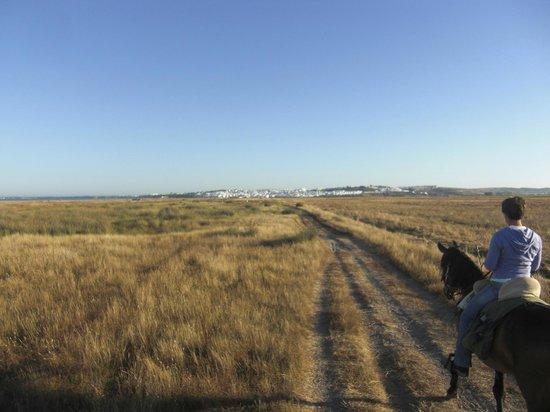 Rancho La Paz: über Felder