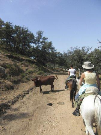 Rancho La Paz: in den Bergen