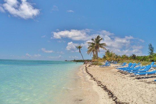 Coco Cay Barefoot Beach
