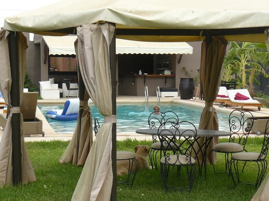 Coco Canel: Détente en piscine près du bar
