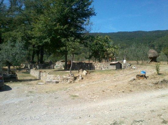 Agriturismo MassoSerpente: Panorama
