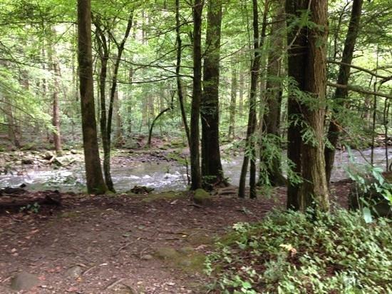 Sugarlands Visitors Center : gatlinburg trail