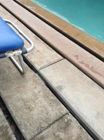 Mango Hill : Bord de la piscine en béton