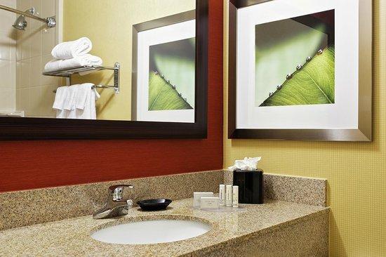 Courtyard by Marriott Houston Brookhollow: Guest Bathroom