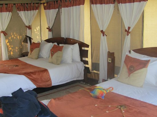 Tipilikwani Mara Camp - Masai Mara: Luxurious rooms