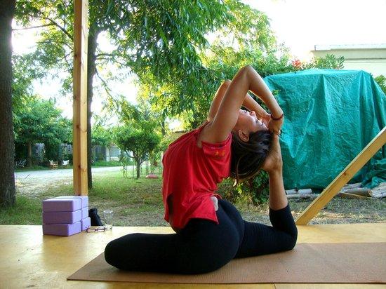 Camping Palouki: Πλατφόρμα για δράσεις μελών