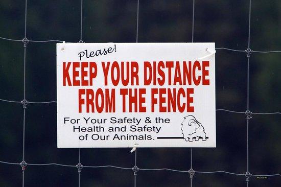 Large Animal Research Station : LARS