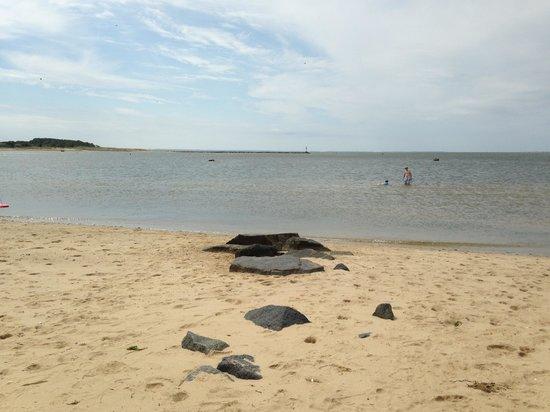 Calm Cool Convenient Review Of Mayo Beach Wellfleet Ma