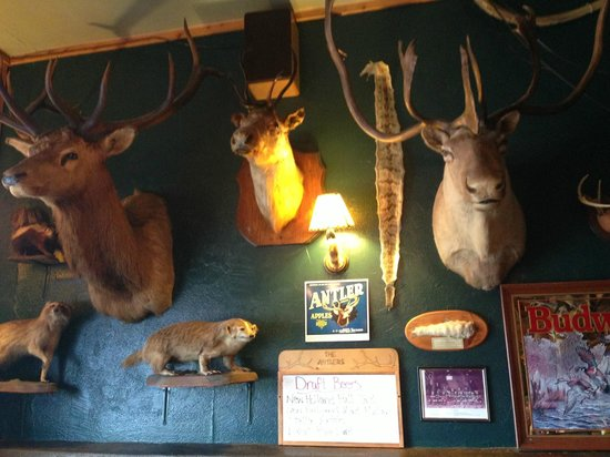 The Antlers Restaurant: The Furry Fish