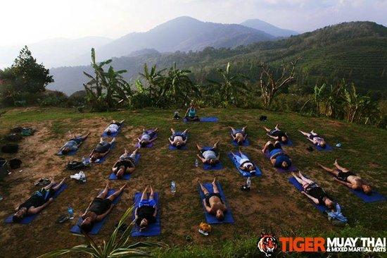 Tiger Muay Thai - Day Classes: tmt yoga class