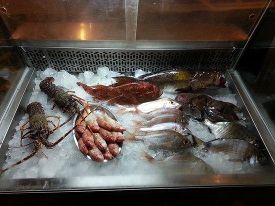 Arodo: fresh daily fish