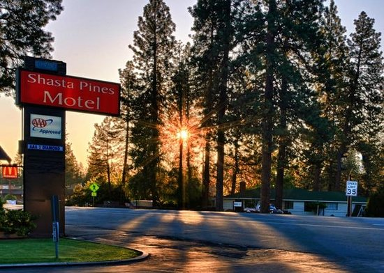Sunrise at Shasta Pines Motel