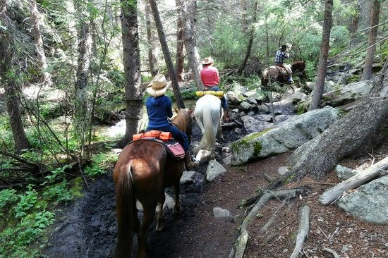 Tumbling River Ranch: Horseback riding
