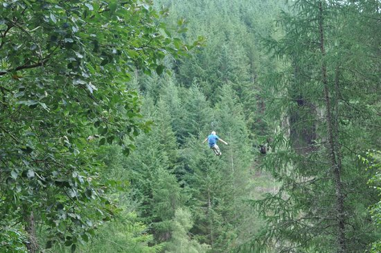 Go Ape at Peebles, Glentress: The last ZIp line