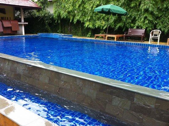Paddy's Palms Resort: The Pool