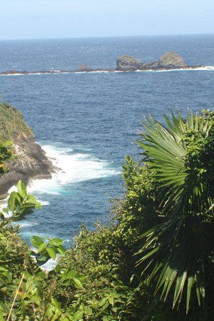Little Tobago: View