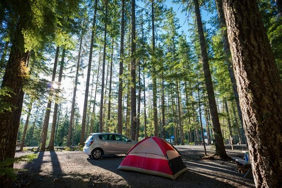 Whistler RV Park & Campgrounds: Tent site