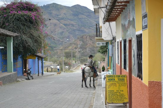 Hosteria Izhcayluma: Yep..horses in town