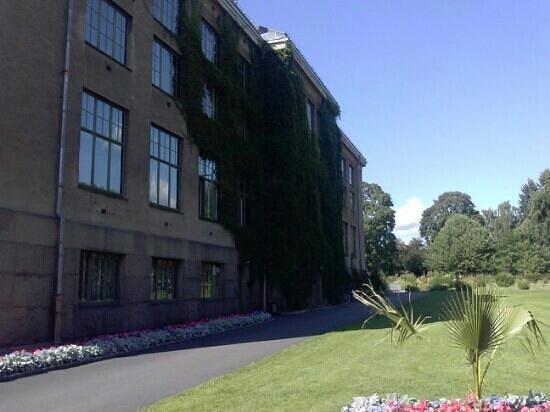 Botanical Gardens (Botanisk Hage og Museum) : giardino