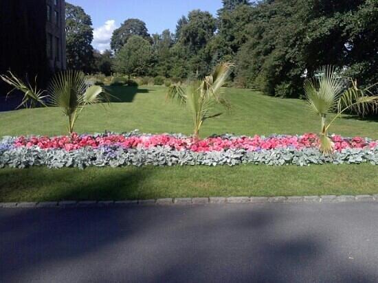 Botanical Gardens (Botanisk Hage og Museum) : fiori