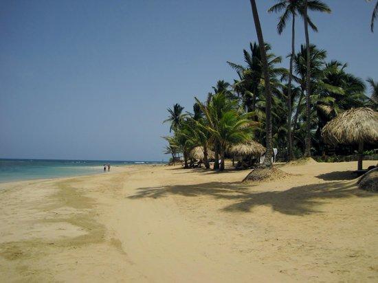 Zoetry Agua Punta Cana: Beach looking East