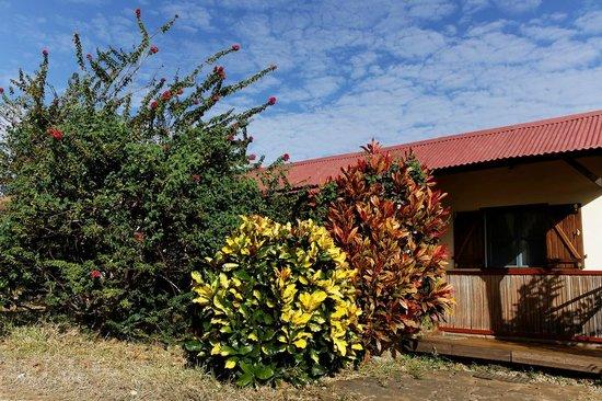 Le relais de l'ankarana: devant le bungalow