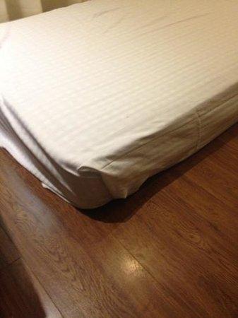 Hotel Cama: in the floor